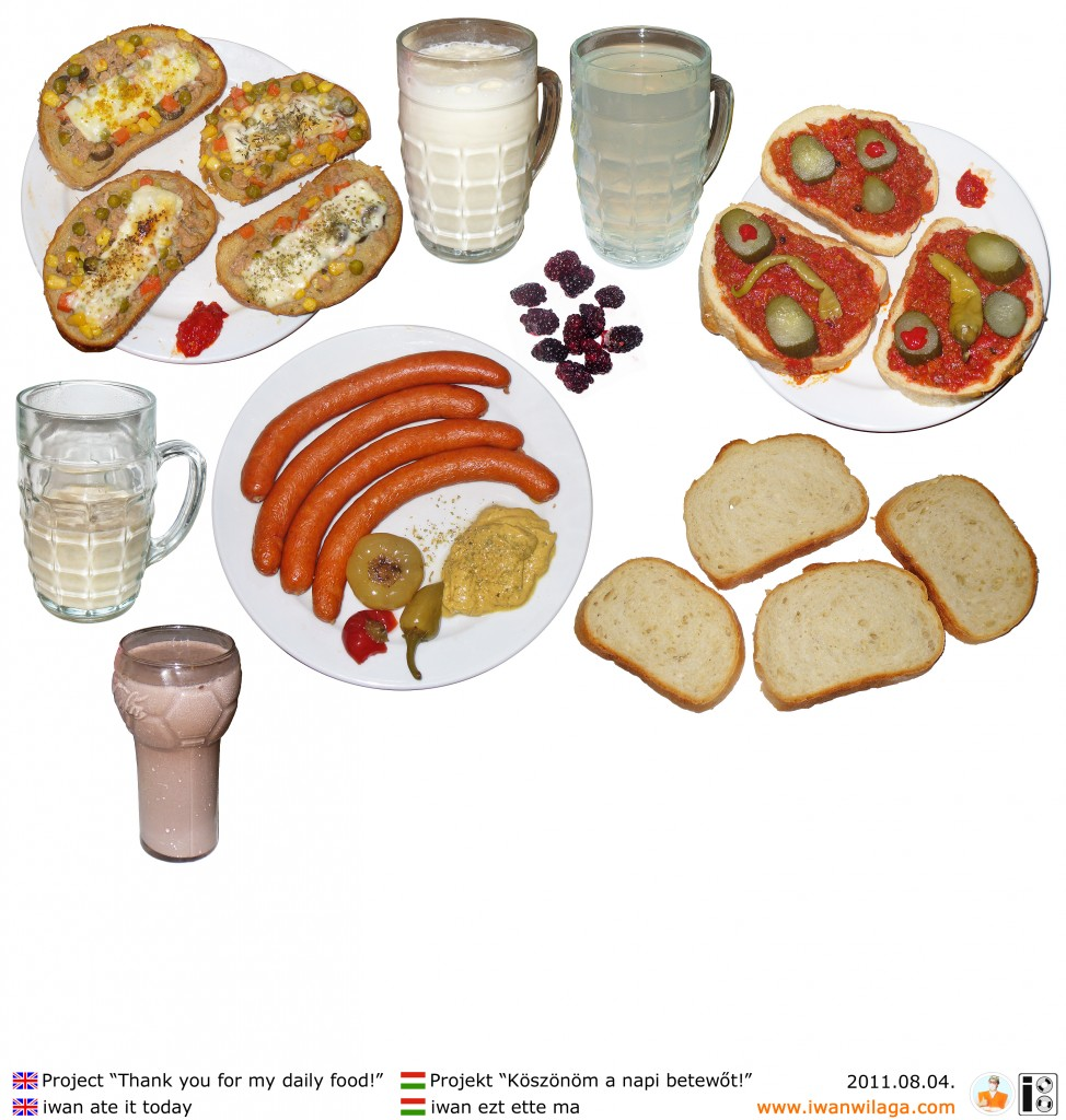 iwan's daily food 2011-08-04