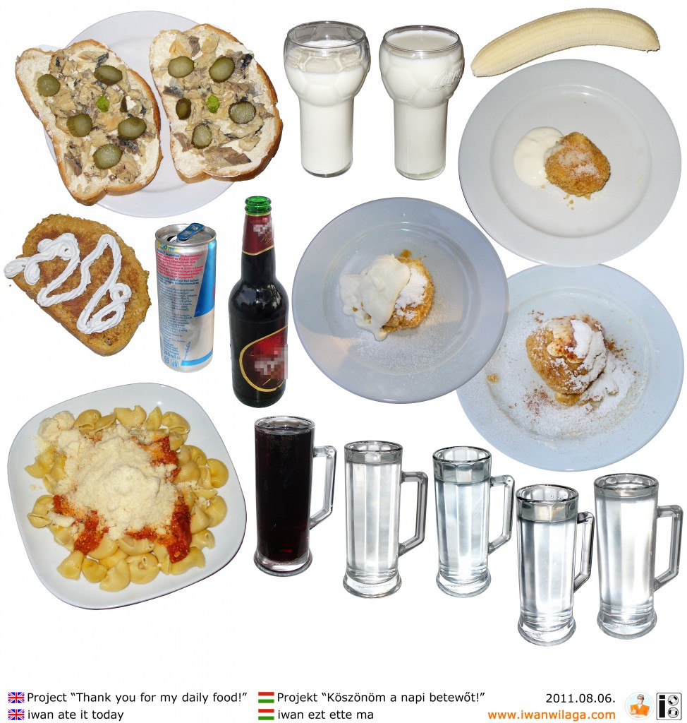 iwan's daily food 2011-08-06
