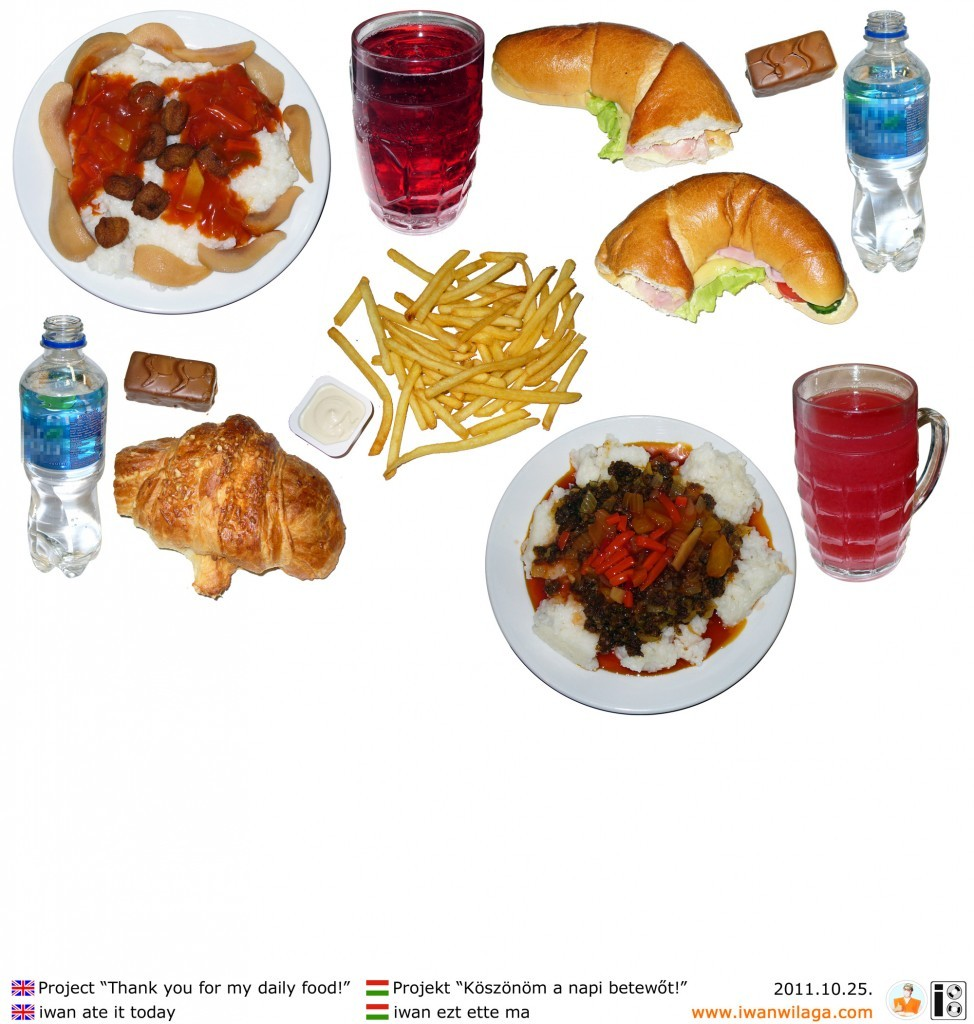 iwan's daily food 2011-10-25